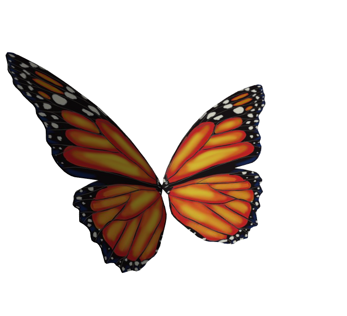 Butterfly Hair Accessory (UGC)